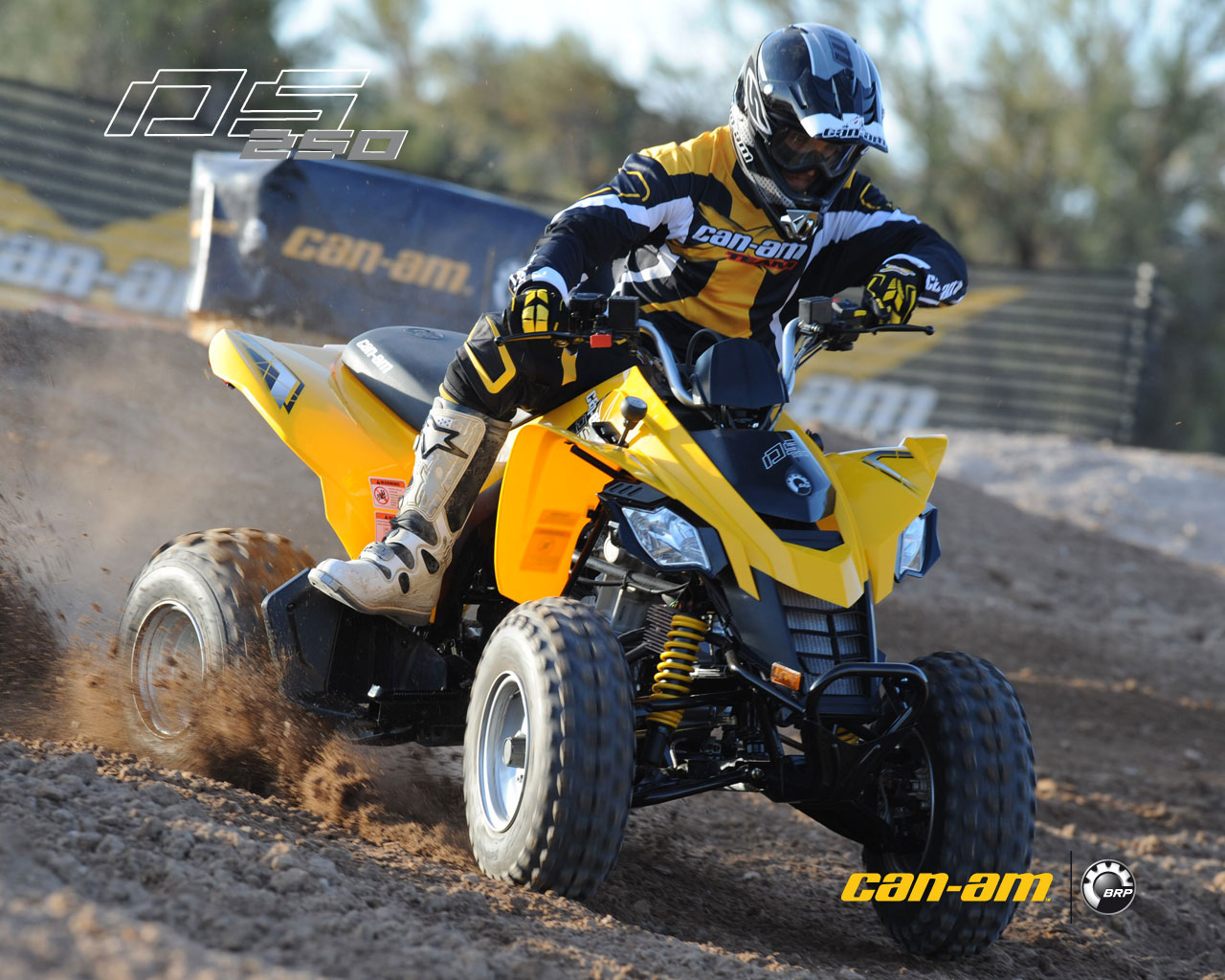 can-am ds 250-pic. 1