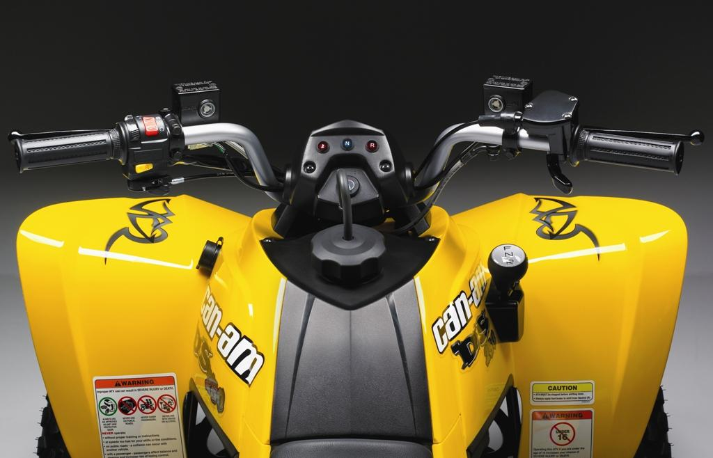 can-am ds 250-pic. 2