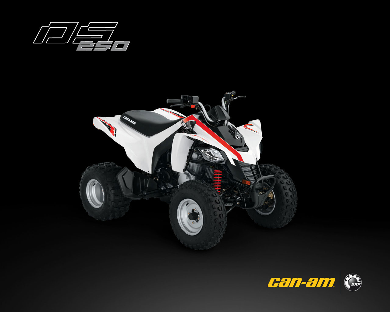 can-am ds 250-pic. 3