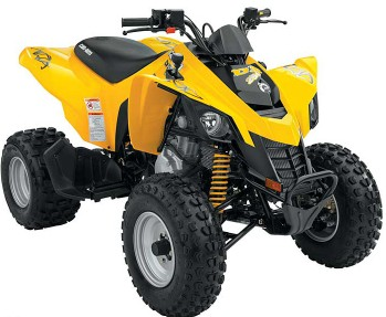 can-am ds 250 #3