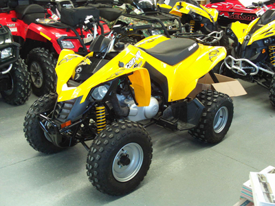 can-am ds 250 #4