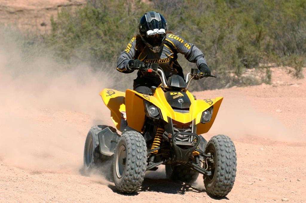 can-am ds 250 #6