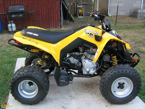 can-am ds 250 #8