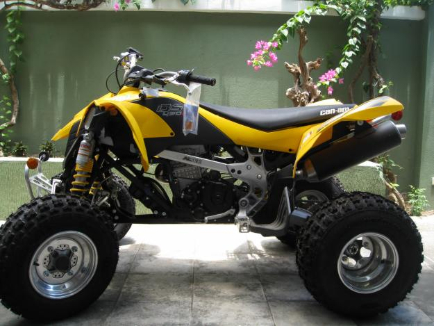 can-am-ds
