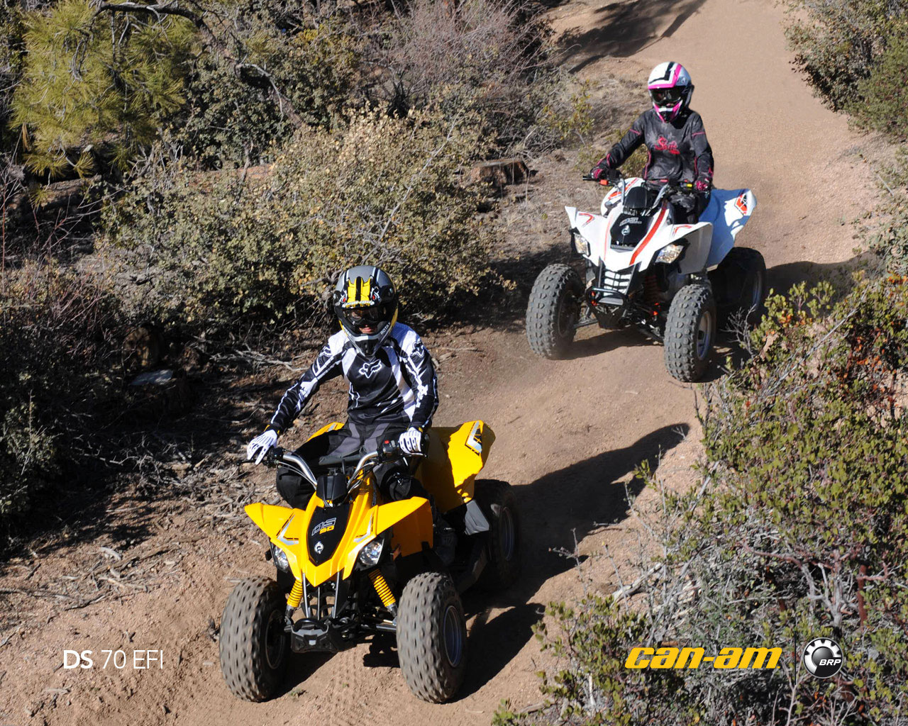 can-am ds 70 #2