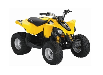 can-am ds 90 #8