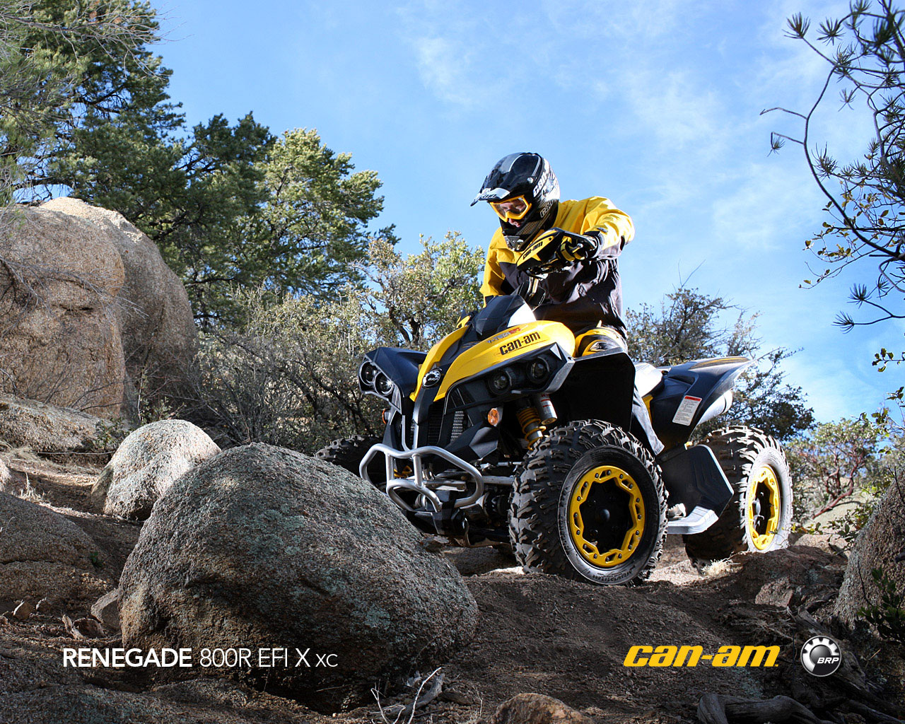 can-am renegade 800r x xc #2