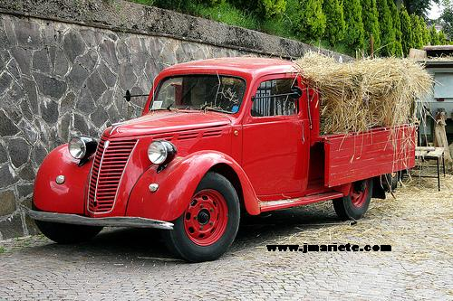 fiat 1100 camioncino-pic. 2