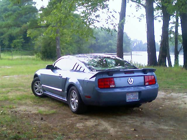 ford mustang v6-pic. 3