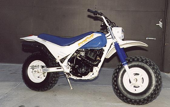 honda fat cat #1