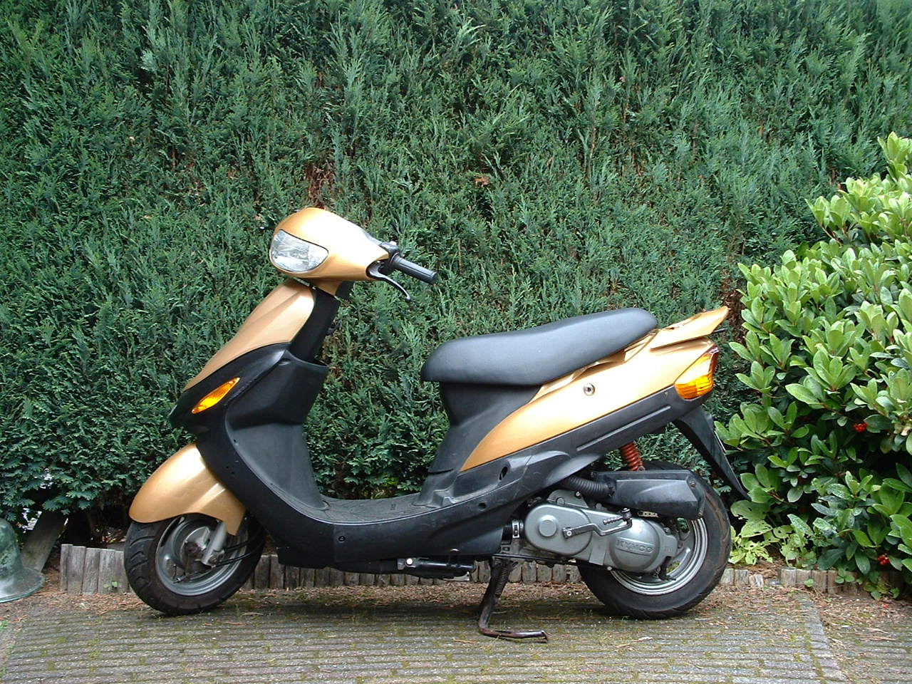 kymco filly 50 lx-pic. 2
