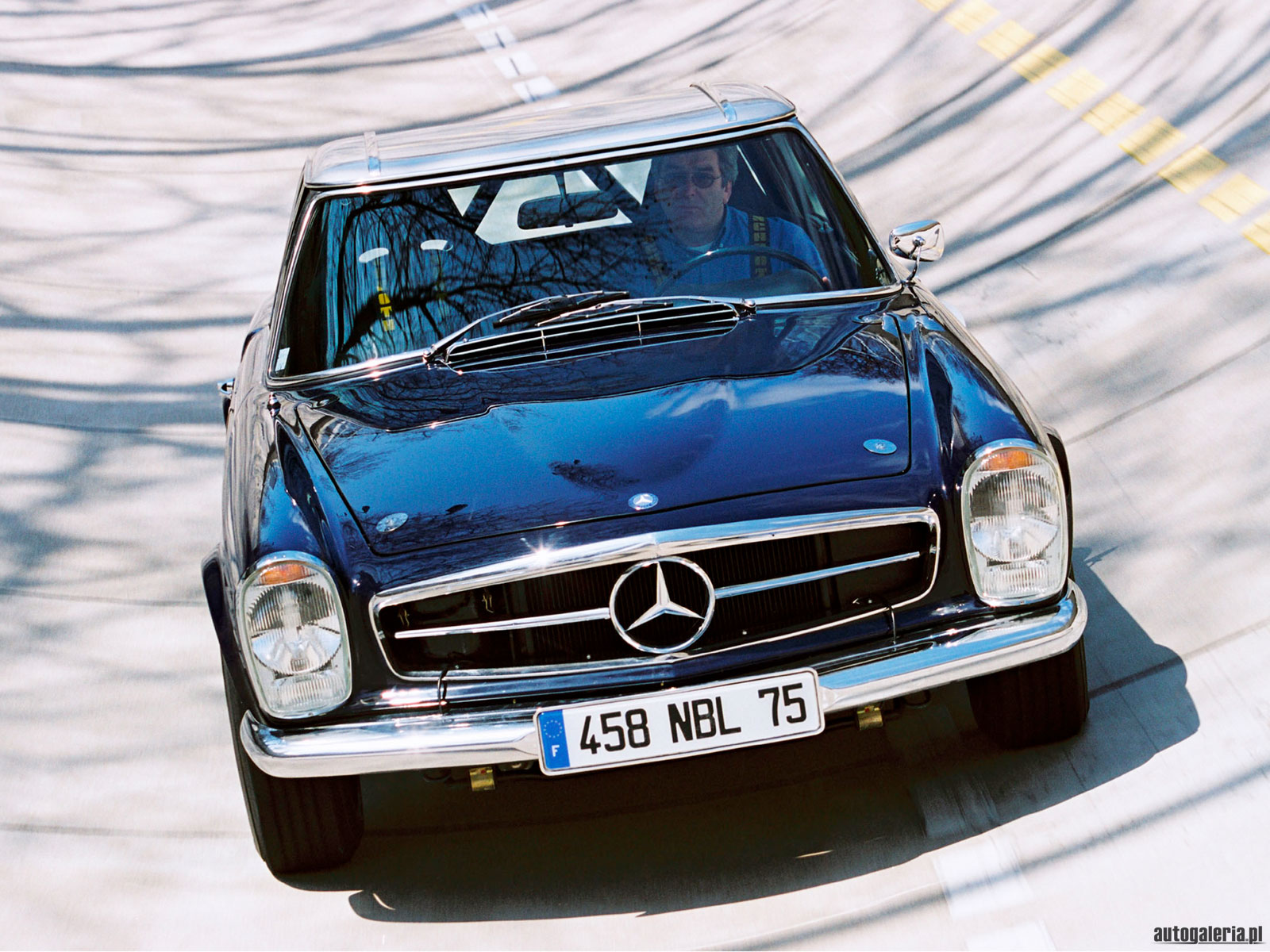mercedes-benz 230 sl #5