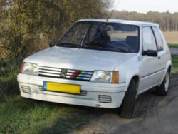 peugeot 205 turbo 16-pic. 2