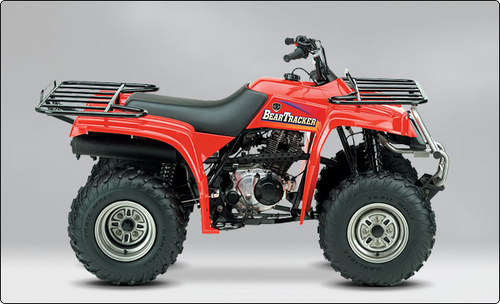 yamaha beartracker 250-pic. 2