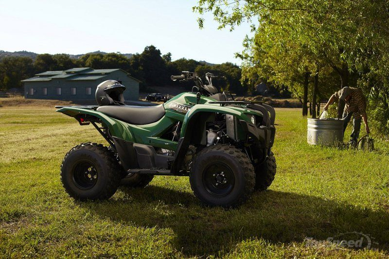 yamaha grizzly 300 automatic-pic. 2